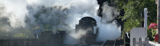 Womderful early morning steam