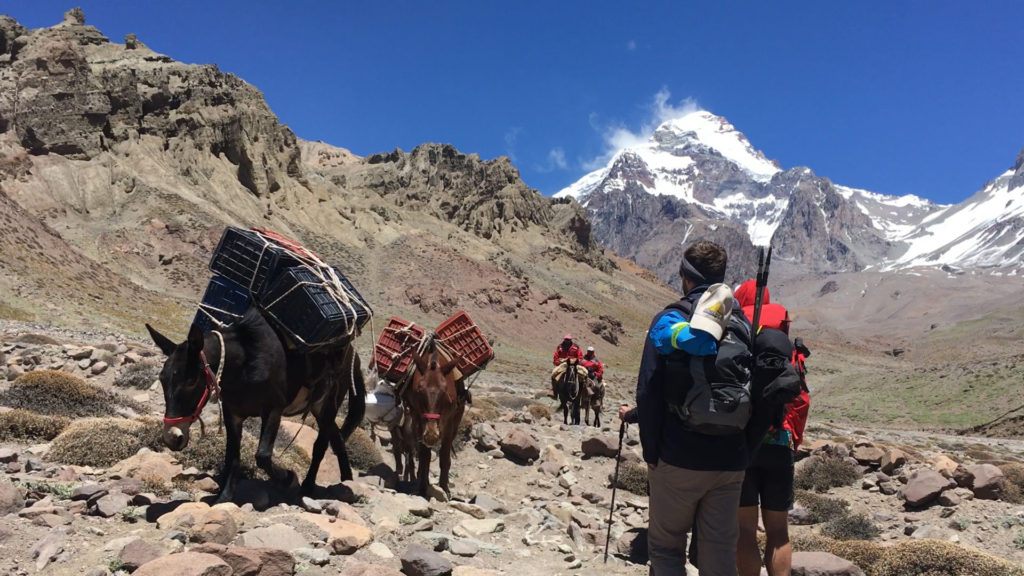 The view of Aconcagua from the Ameghino route