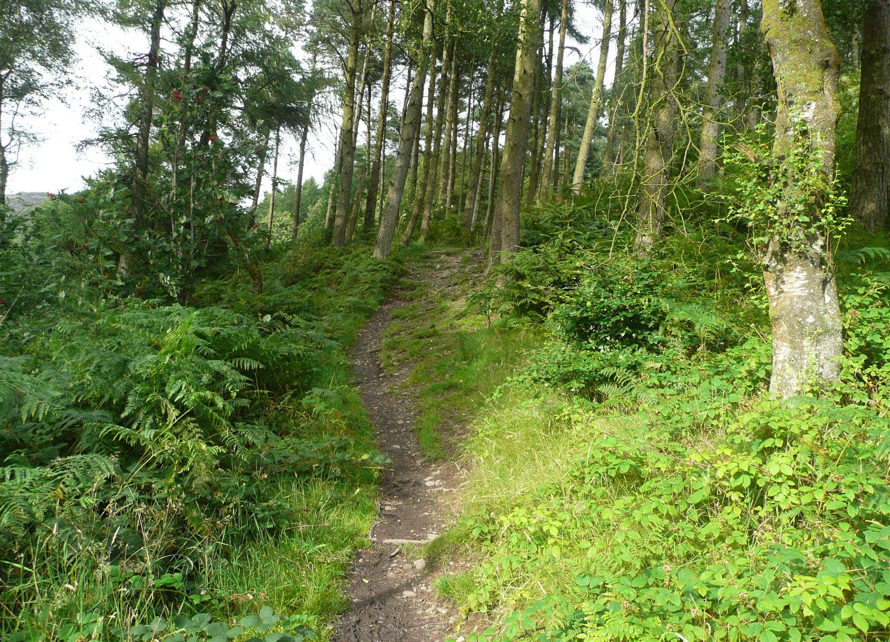 Gummer's How path