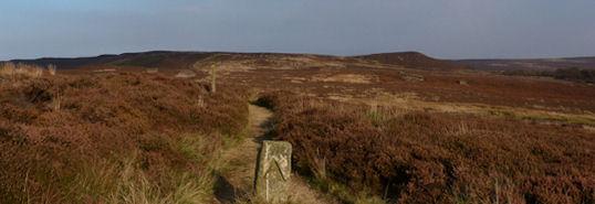 Typical Moorland Walking