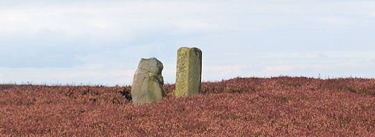 Faber Stones on Osmotherley Moor