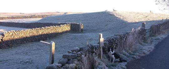 lp-winter-waiting-at-beck