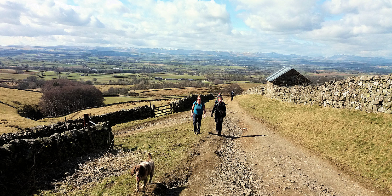 Above Dufton