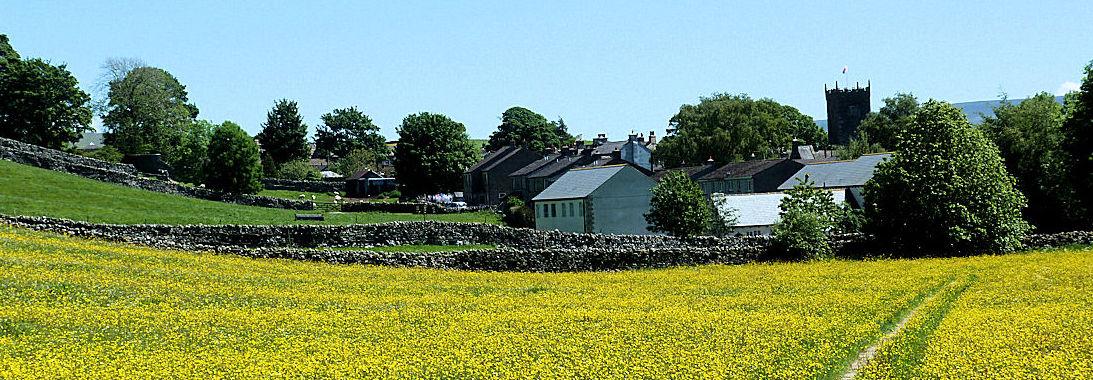 Hay Meadows in Askrigg