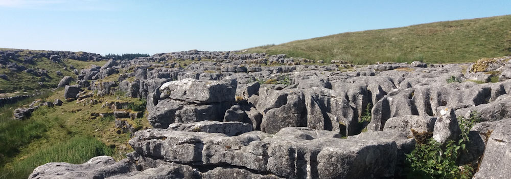 Limestone Pavement on Ingleborough