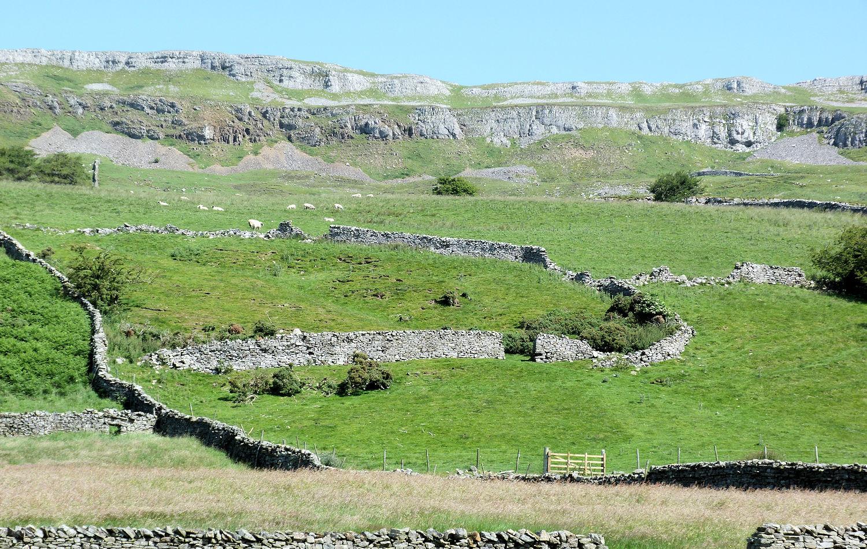Dry stone walls near Askrigg