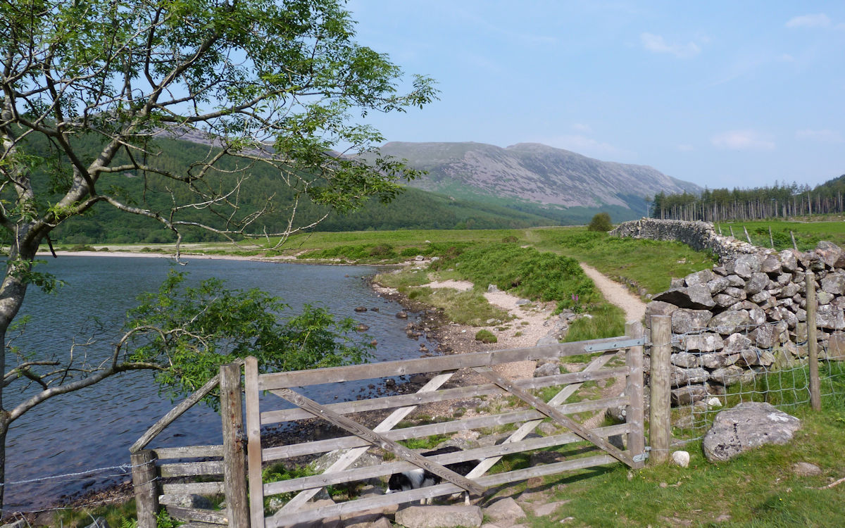 East shore at Ennerdale